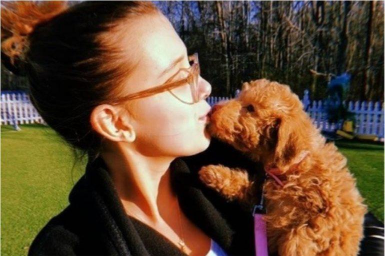 mascota beneficios de adoptar un perro