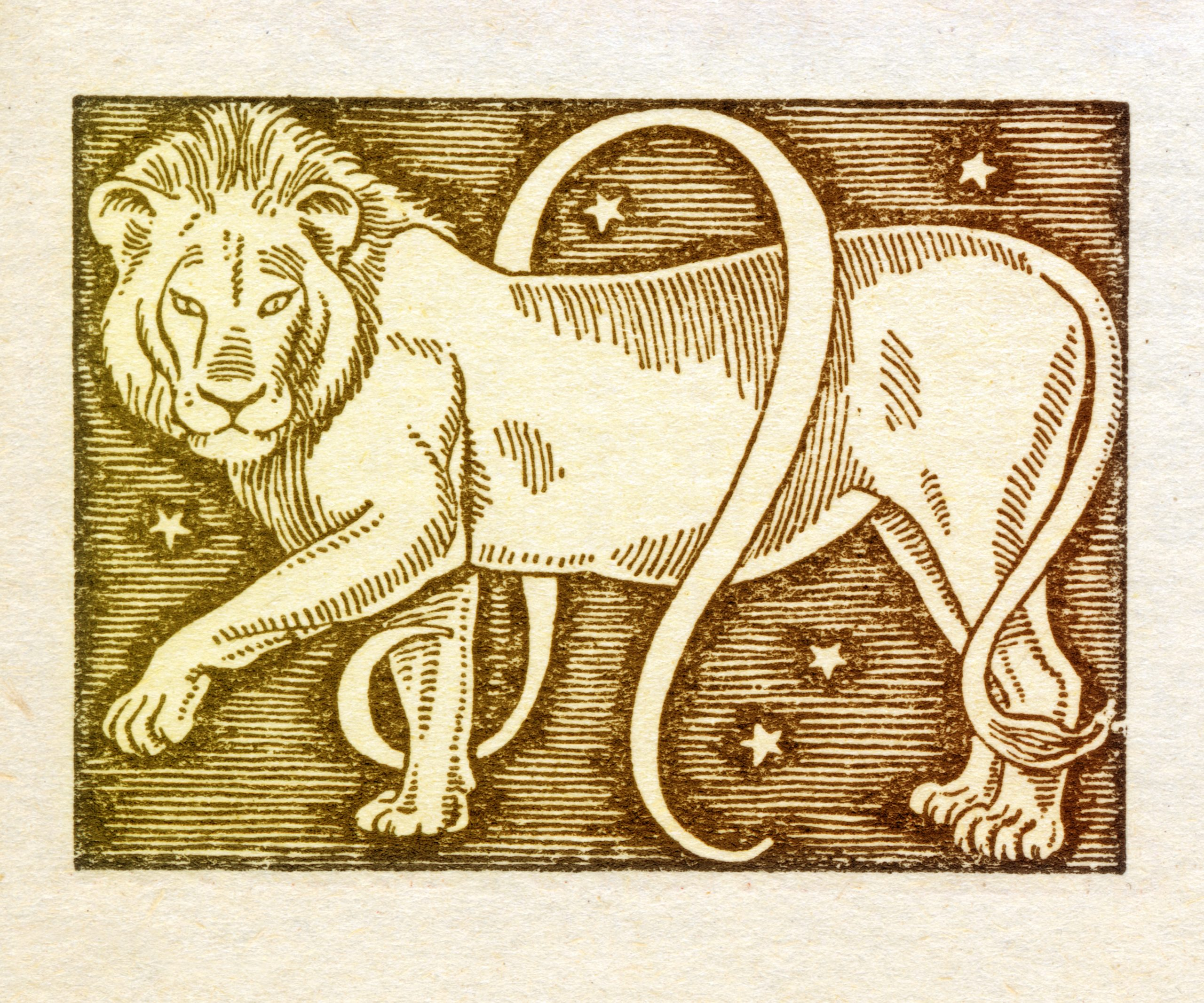 leo caracteristicas signo zodiacal