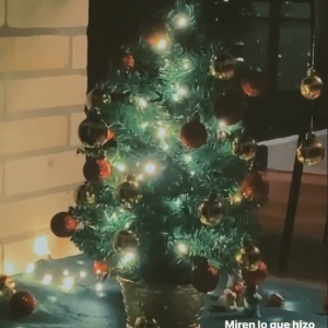 Evaluna navidad