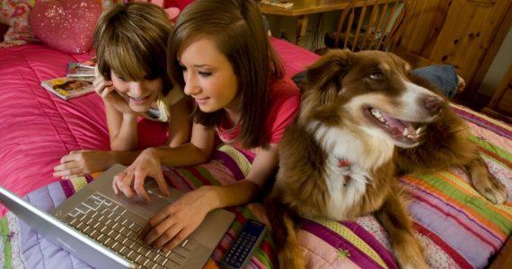 como saber si tu perro es zurdo diestro