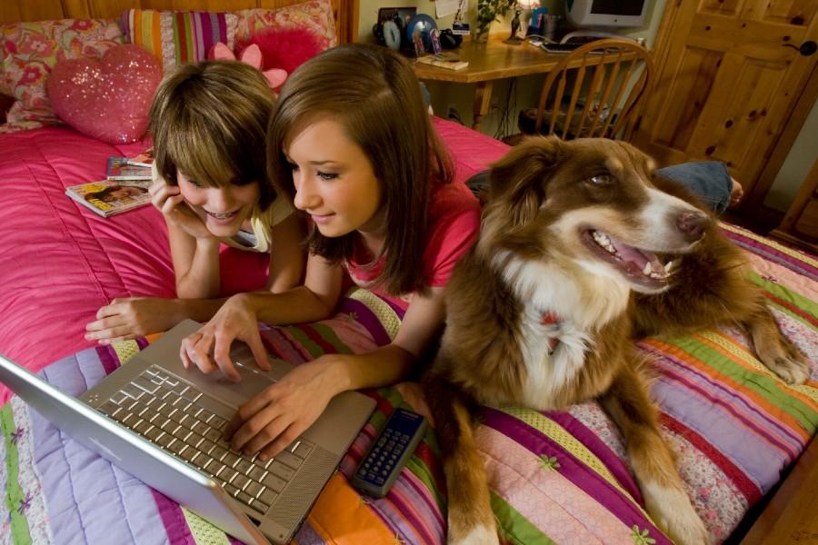 dia internacional del perro como saber si tu perro es zurdo diestro