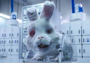 save ralph video campaña pruebas cosméticas animales