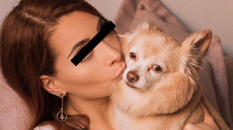 yosstop perro